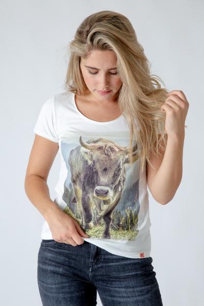Damen T-Shirt Bergkuh bunt